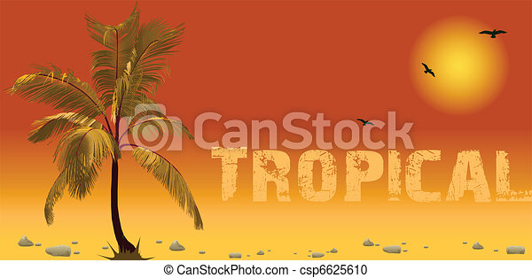 Sea and coconut palm. Vector sunset - csp6625610