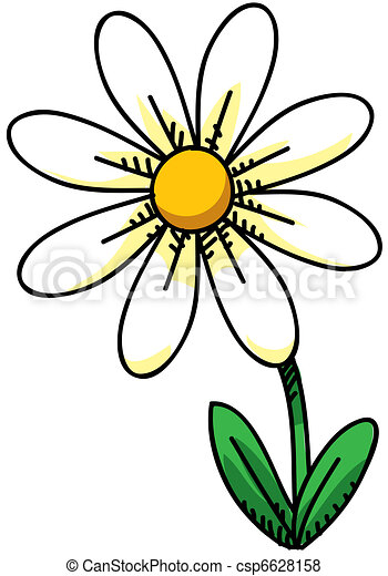 Illustration de p querette dessin anim p querette Where did daisies originate