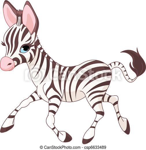 Cute  running   baby Zebra - csp6633489