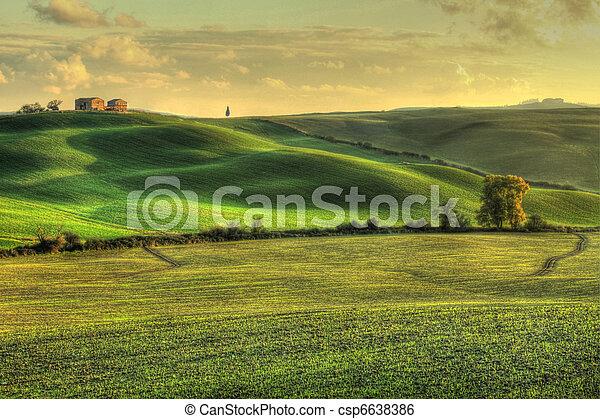 Tuscan landscape (HDR) - csp6638386