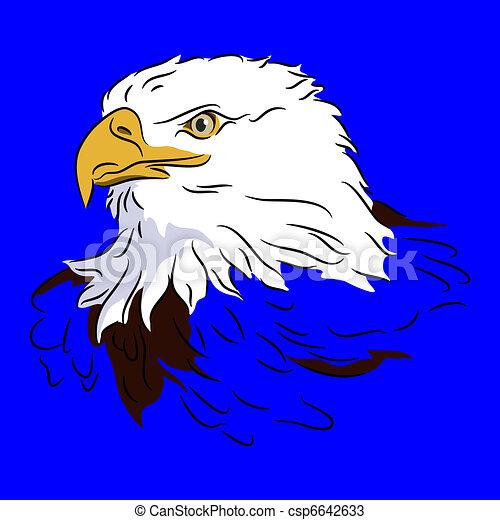 Bald Eagle Head - csp6642633