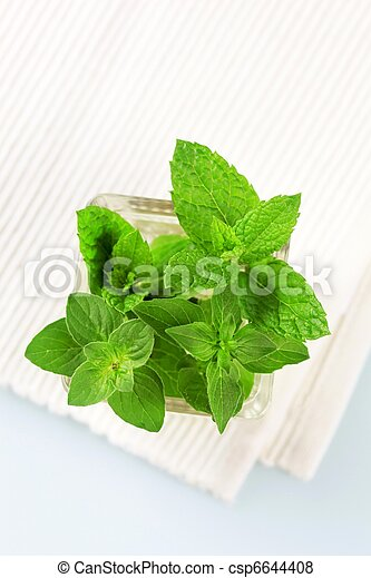 Culinary herbs  - csp6644408