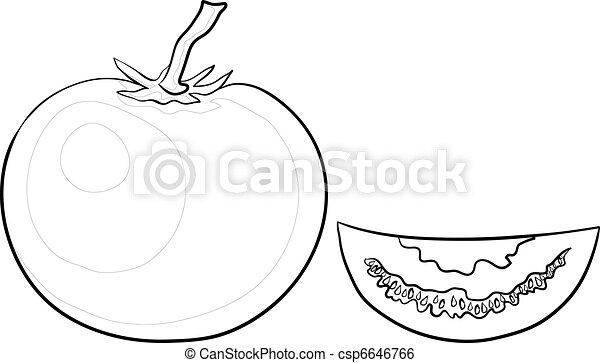 Tomato and segment, contours - csp6646766