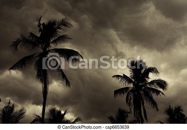 Tropical Monsoon Skyline