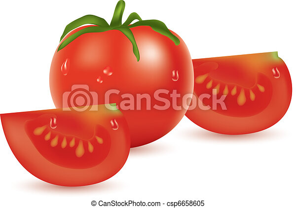 vector tomato and slices - csp6658605