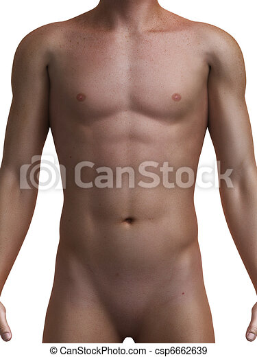 healthy male torso - csp6662639