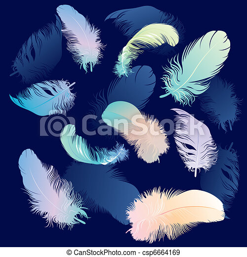 Colored Feather Set - csp6664169