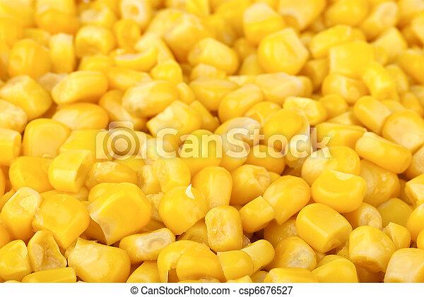 alimento, background:, preparado, maíz, granos - csp6676527