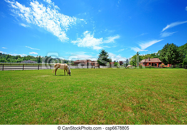 A horse ranch with a house and fence.