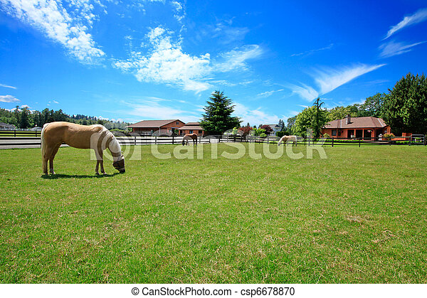 A horse ranch with a house and fence. - csp6678870