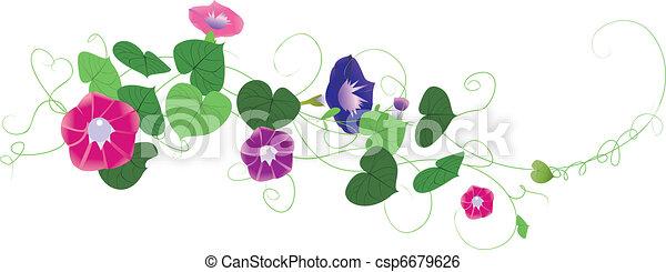 Fantasy garden background-Morning glory   - csp6679626