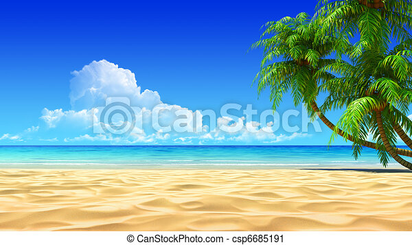Palms on empty idyllic tropical sand beach - csp6685191