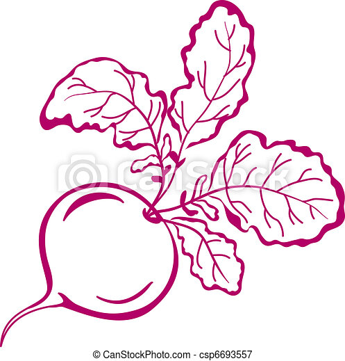 Radish with leaves, pictogram - csp6693557