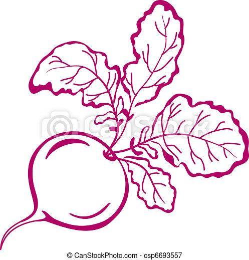 Radish with leaves, pictogram - csp6693557