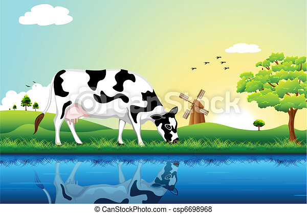 Grazing Cow - csp6698968