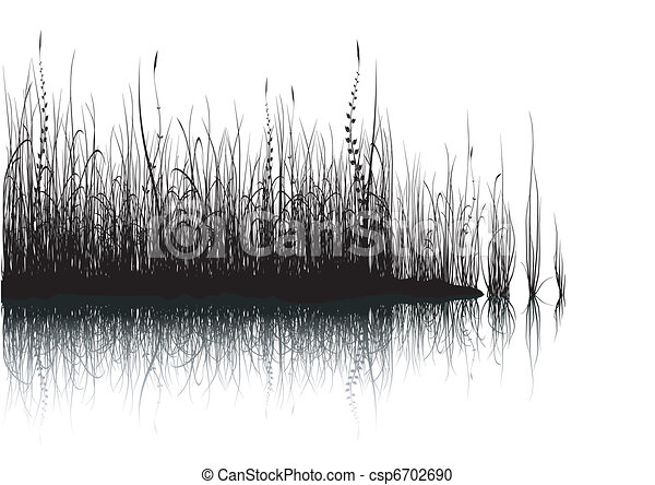 Grass - isolated on white - csp6702690