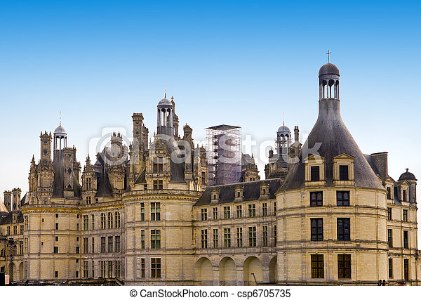 castle  of a valley of the river Loire. France. 