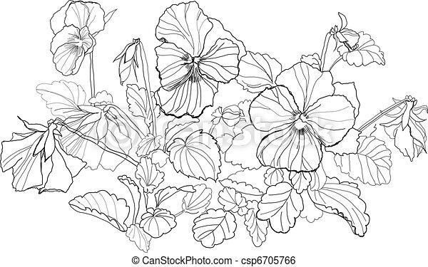 Kleurplaat Altviool Clip Art Vector Van Altviool Bloemen Tekening