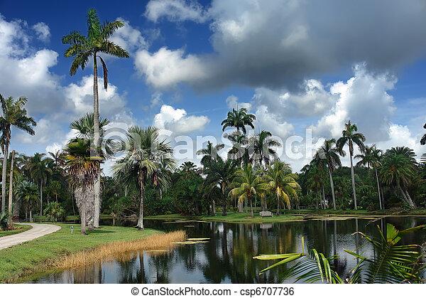 Tropical botanic garden - csp6707736