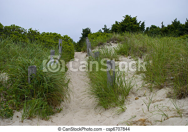 Cape Cod Beach Trail - csp6707844