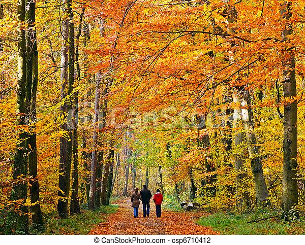 Family walking through autumn park - csp6710412