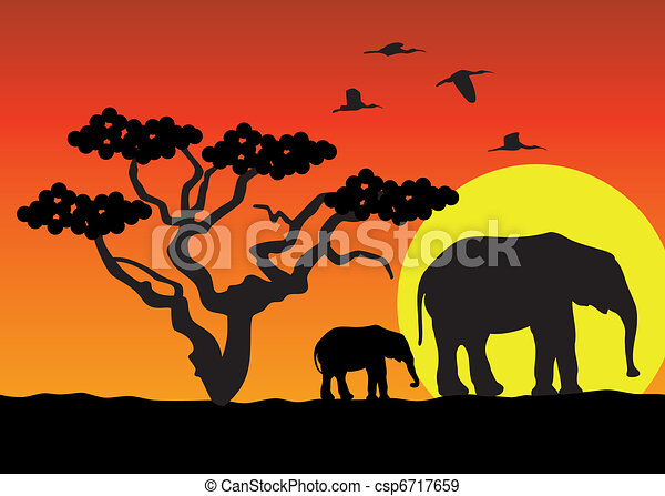 elephants in africa - csp6717659