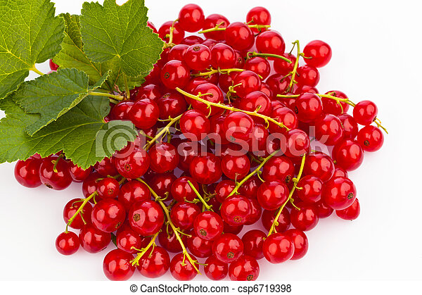 Red currant - red currant - csp6719398