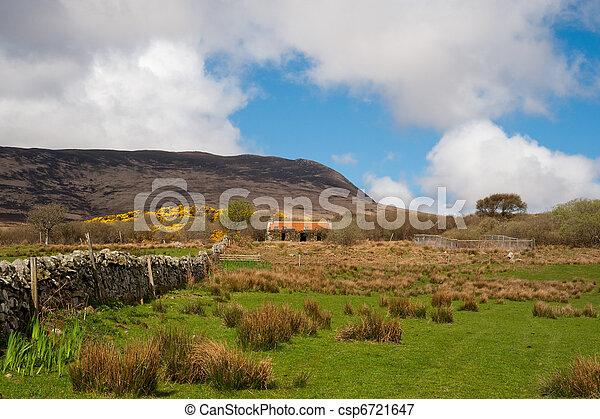 Islay field - csp6721647