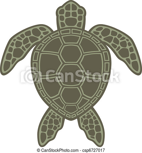 Green Sea Turtle - csp6727017