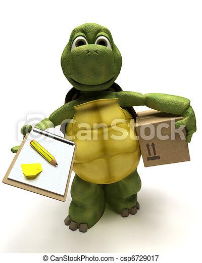 tortoise delivering a parcel - csp6729017