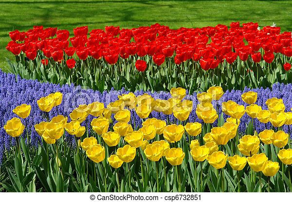 Flower bed in Keukenhof gardens - csp6732851