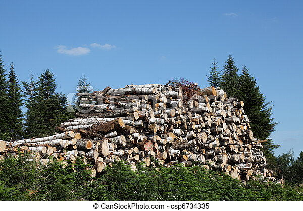 Natural Resources Timber Wood - csp6734335