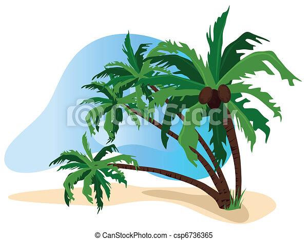 The Tropics  - csp6736365