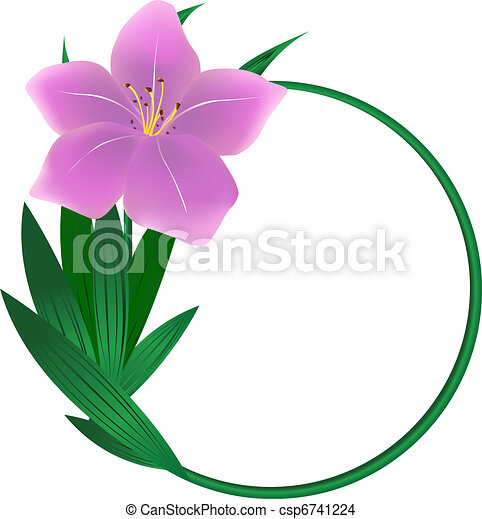 eps vector of round lily flower background  beautiful round lily, Beautiful flower
