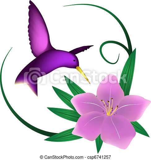Hummingbird and lily, isolated  - csp6741257