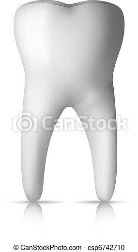 Molar Tooth - csp6742710