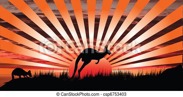 kangaroo sunset   - csp6753403
