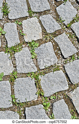 pavement stone tile with grass germination - csp6757552