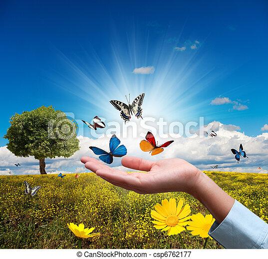 ambiente, proteggere - csp6762177