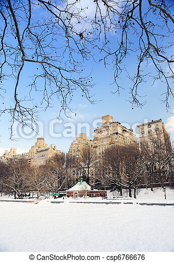 New York City Manhattan Central Park in winter - csp6766676
