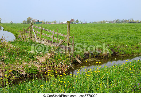 Agriculture in Holland - csp6770020