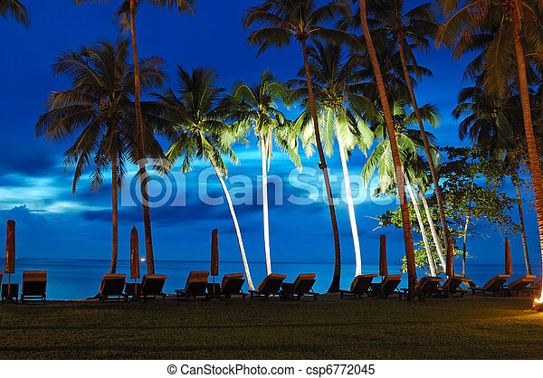 Beach at sunset with illuminated coconut palms, Koh Chang island, Thailand - csp6772045