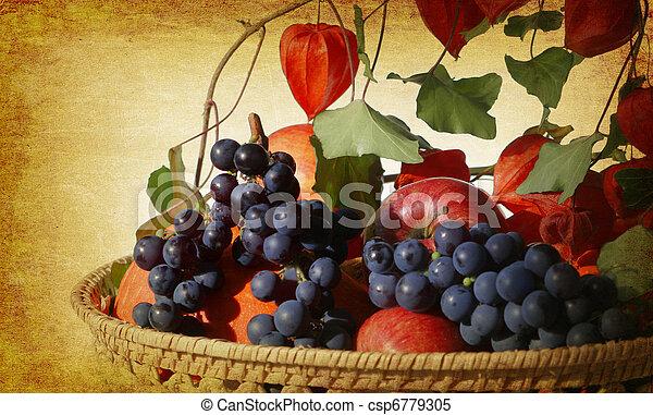 vintage garden harvest - csp6779305