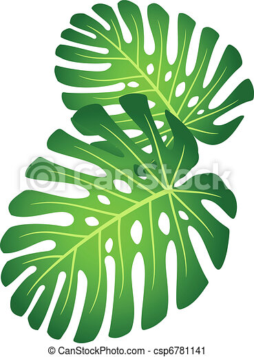 clip art vecteur de exotique plante feuilles monstera feuilles de csp6781141. Black Bedroom Furniture Sets. Home Design Ideas