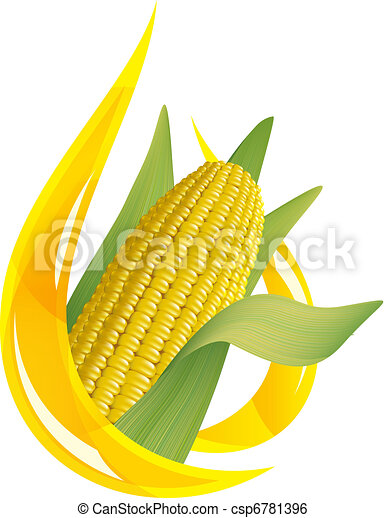 Corn oil. Stylized drop of oil, and corn cob. - csp6781396