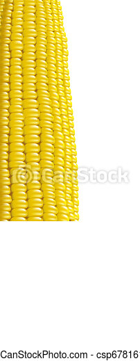 Ripe corn. Fragment. Vector illustration macro. - csp6781614