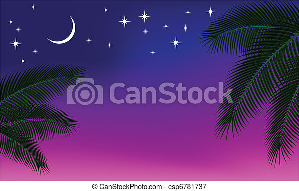 Night sky and a palm branch. - csp6781737