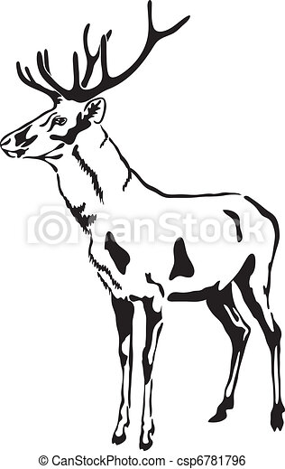 Deer with large antlers. Vector Sketch. - csp6781796