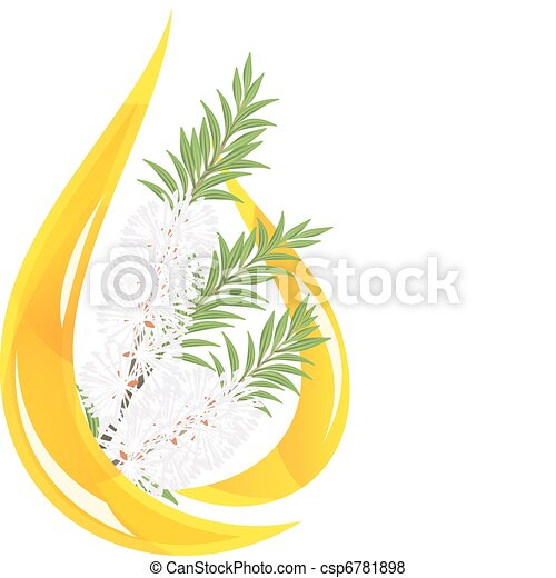 Melaleuca - tea tree.  Stylized drop of essential oil. - csp6781898