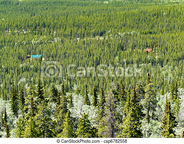 Country Living in Boreal Forest - csp6782558